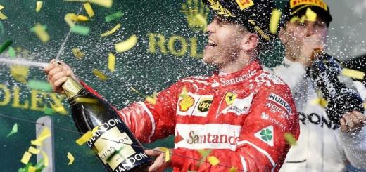 champagne Vet
